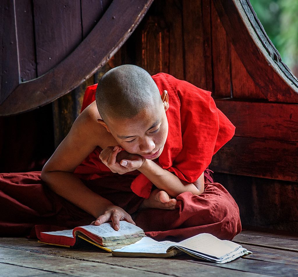 Colour Print - 1st Place: Novice Monk Studying by Dawn White
